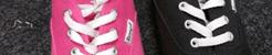 rosa bee